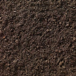 Enriched Vital Earth Top Soil